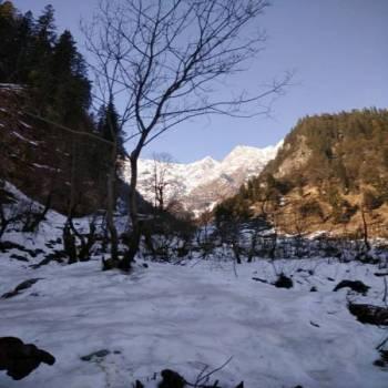 Delhi-Shimla-Kufri-Manali-Dharamshala-Amritsar Tour