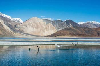 Jewels of Ladakh 6 Days