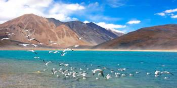 Manali With Pangong Tso Tour