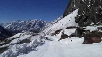 Gangtok with Yumthang Valley Tour