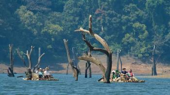 4 Nights 5 Days - Cochin - Munnar - Thekkady - Alleppey - Cochin Tour