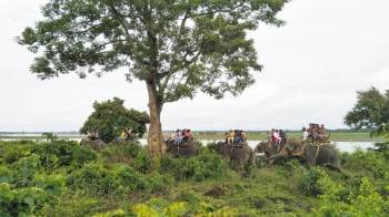 Kaziranga Off-season Tour 5d 4n