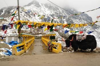 Bhutan 7 Night 8 Days Tour Packages