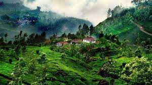 3 Days Coorg Tour Package