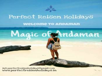 Magic of Andaman 8Days Spacial Honeymoon Package