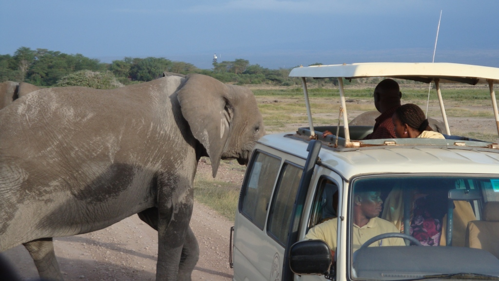 3 Days Maasai Mara Safari Tour