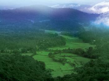 Bangalore - Mysore - Ooty - Coorg- Package