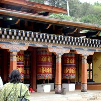 Bhutan via Rhino Colony Tour