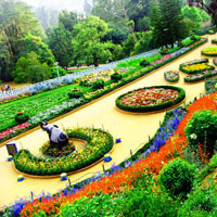 Ooty - Mysore Tour Program