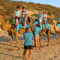 Rajasthan Camel Opera Tour