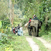The Best of Best National Parks Tour of India