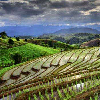 The Best Of Northern Thailand Tour