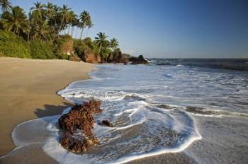 Emerald Kerala Packages