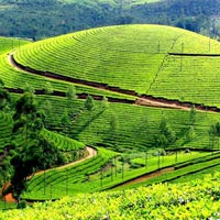 Lakshdweep With Kerela - Munnar - Thekkady Tour