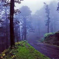 Manali to Shimla Jalori Pass Trek