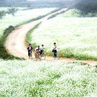 Mai Chau And Moc Chau Off Road Biking Tour 03 Days