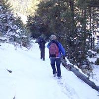 Langtang Gonsaikunda Trek Tour