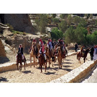Tour from Eilat / Aqaba Port / Aqaba Airport (2D / 1N)