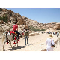 Petra One Day Tour from Eilat / Aqaba Port / Aqaba Airport