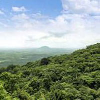 Kerala Tour - DP13A-KT(CWCCMTKKKT)