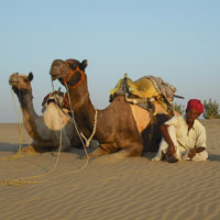 Rajasthan Wildlife Vacations Tour