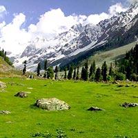 Srinagar Paradise Tour