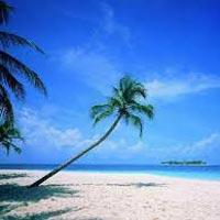 Beaches of Kerala Tour