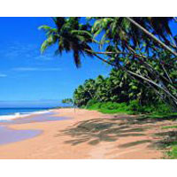3Nights & 4Days Go Goa Tour Package