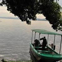 8 Days Uganda Safari Lake Mburo, Bwindi Gorilla Forest, Queen and Kibale National Parks Tour