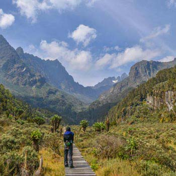 Rwenzori Moutains Safari Uganda - 10 Days Tour