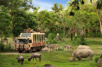 13 Days Uganda Safari Holiday Tour