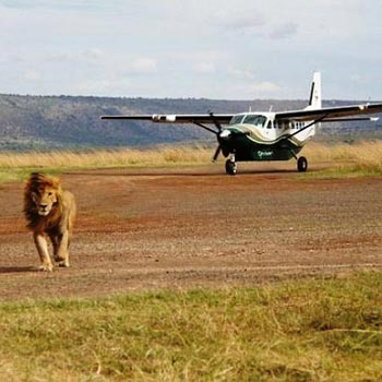 Masai Mara Air Safari Package
