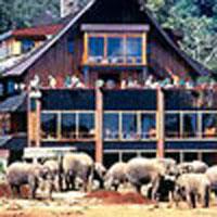 Samburu - Aberdare - Amboseli Tour