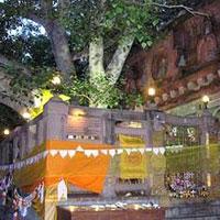 Bhudhist Pilgrim Tour