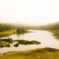 Hills of Southern India with Flights Tour