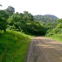 Culture Tour - Gambella, Surma & Kibish