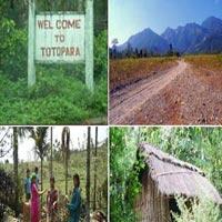 Dooars - Buxa, Jaldapara Gorumara Package Tour - 07 Nights and 08 Days