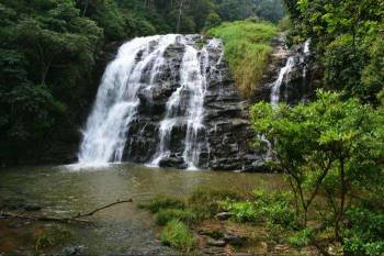 1 Night Coorg Package
