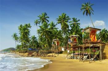 Goa Volunteer Program Tour