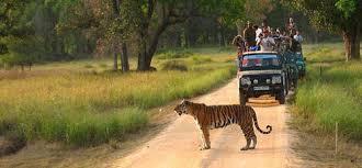Historic Madhya Pradesh Tour