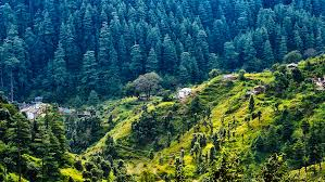 Nainital Kausani Tour 6 Days