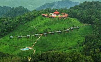 Mysore Coorg Ooty Tour Package 6 Days