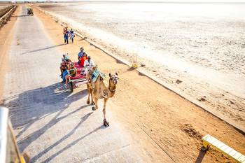 Kutch Port Desert and Beach Trip