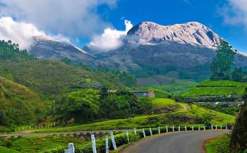 Best of Munnar at Sterling Munnar 2N Weekday(4 Star)