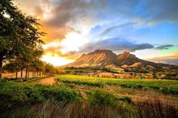 Explore Cape Town,Garden Route & Sun City - 7N - 5Star