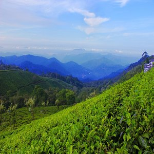 3 Night 4 Days Kerala Packages From Kochi