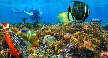 Cairo And Sharm El Sheikh Package