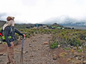 7 Days Umbwe Route Private Trekking tour itinerary for Moshi & Mount Kilimanjaro