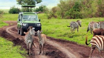 Exclusive African Safari Vacations Package