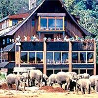 Kenya Cultural & Wildlife Safari Tour